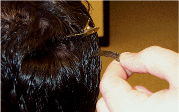 What happens when you take a hair follicle test?